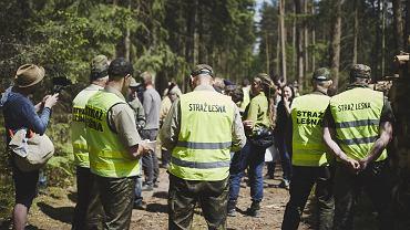 Straż leśna nie dopuściła do wizji lokalnej naukowców w Puszczy Białowieskiej