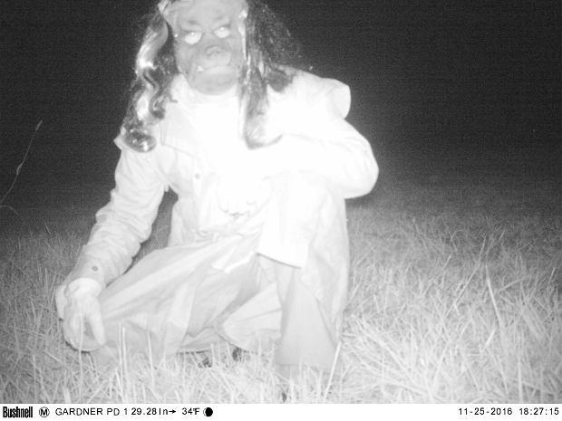 Policjanci z Kansas zainstalowali kamery, by złapać groźną pumę. Ale sprawy wymknęły się spod kontroli