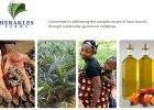 Kameru�ska wojna palmowa. Mieszka�cy wiosek walcz� z wielkim koncernem