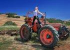 Dziewczyny na traktory. Skąd się wzięła farm lit, literatura o ciężkiej pracy i miłości na farmie