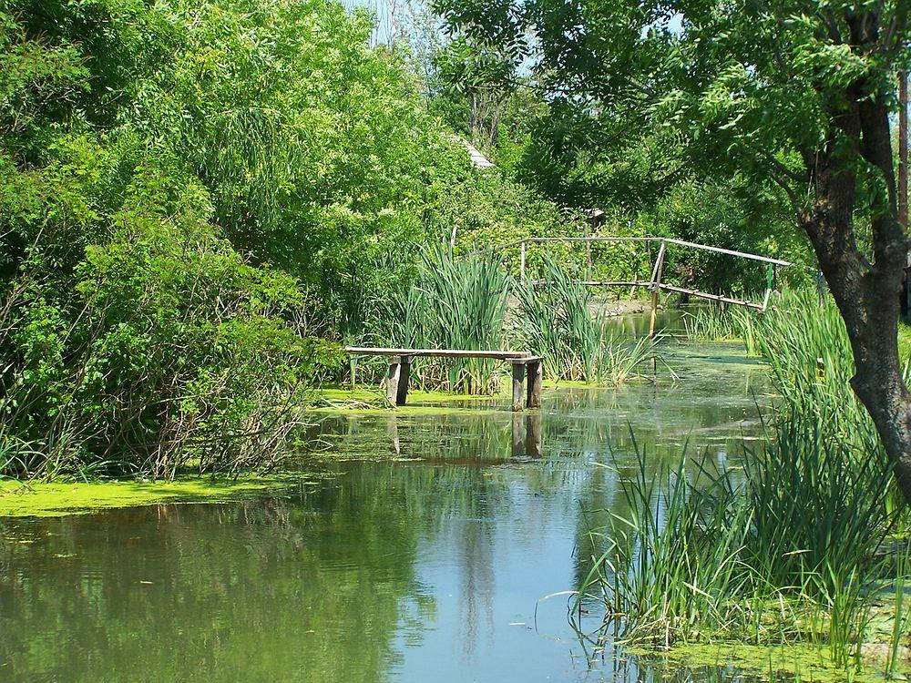 Wilkowo, Delta Dunaju, Ukraina wycieczki / Shutterstock