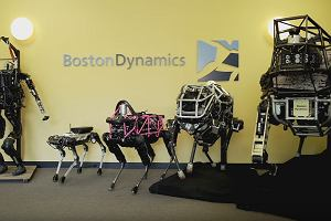 To pies? A mo�e osio�? �yrafa? Nowy robot od Boston Dynamics