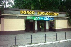 Stare Zoo. Kierownik zwolniony za picie alkoholu w pracy