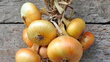 Cebula należy do warzyw białych (niezależnie od koloru skórki), a te są uznanymi pogromcami przeziębienia