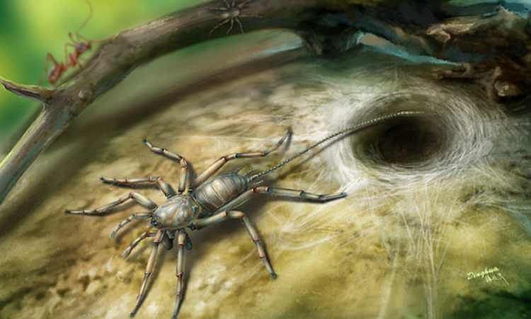 Artystyczna rekonstrukcja Chimerarachne yingi - ogniwa między pająkami a ich wymarłymi kuzynami