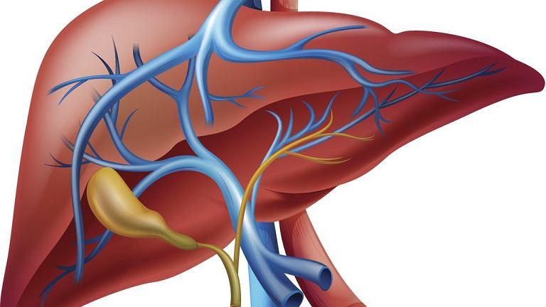 Naczyniaki wątroby, łagodne zmiany budowane zwykle przez prawidłowe naczynia żylne, najczęściej nie wymagają leczenia