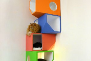 Wnętrze przyjazne kotu - 10 oryginalnych pomysłów