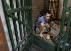 Dramat chorych psychicznie w Indonezji