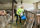 """Ten rolnik codziennie biega 42 km. """"Świnie, pole, a na deser - maraton"""""""