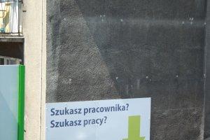 Polscy absolwenci rzadziej na bezrobociu, ale z umowami czasowymi