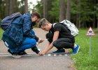 Karpovicius znak informuj�cy o przej�ciu dla je�y postawi� w s�ynnym wiele�skim parku Vignis.  - Zdj�cia