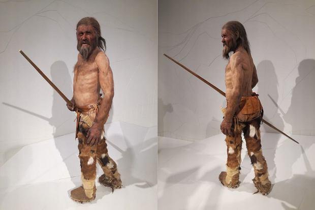 (Powyżej to nie prawdziwy Ötzi, lecz jego rekonstrukcja - tak mógł wyglądać)
