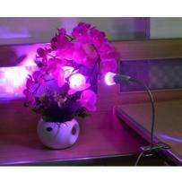Lampa Led przenośna do hodowli roślin