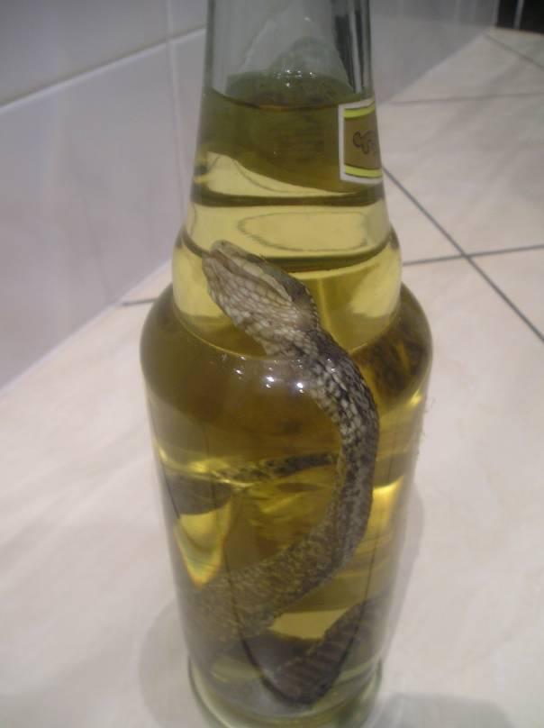 Gdzie kupić alkohol na wesele poznań olej z konopii gdzie