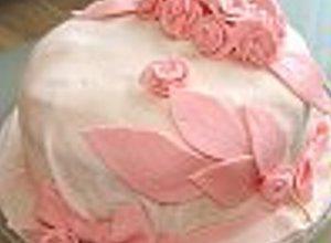 Tani tort