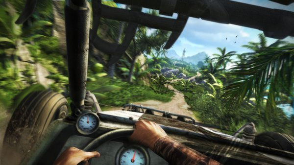 Far Cry 3 - kadr z gry