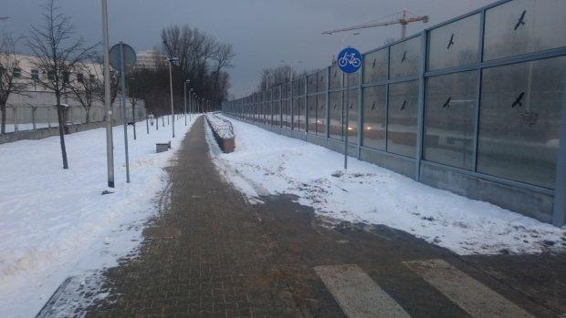 Zupełnie nieodśnieżona droga dla rowerów (po prawej stronie) w al. Wilanowskiej (między ul. Sobieskiego a al. Sikorskiego)