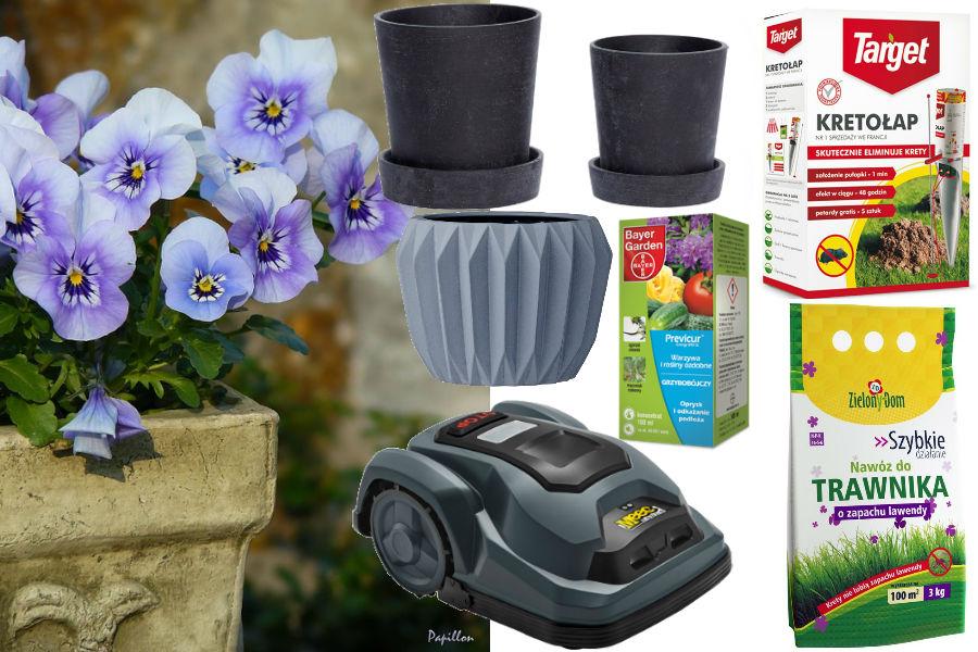 ogród, kwiaty, donice, rośliny, balkon