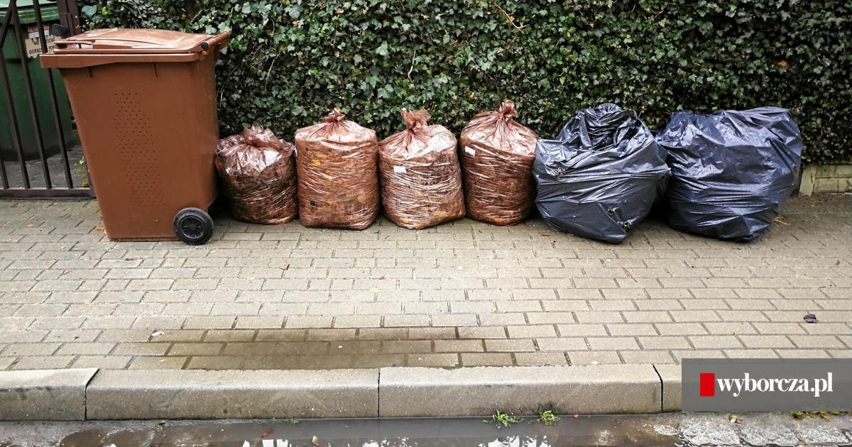 Dodatkowe Segregacja śmieci. Bioodpady wyrzucamy osobno. Tylko brązowe YM84