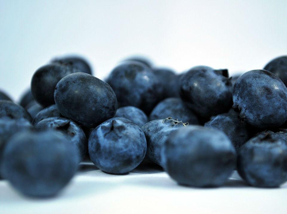 Najzdrowsze owoce świata - borówka amerykańska