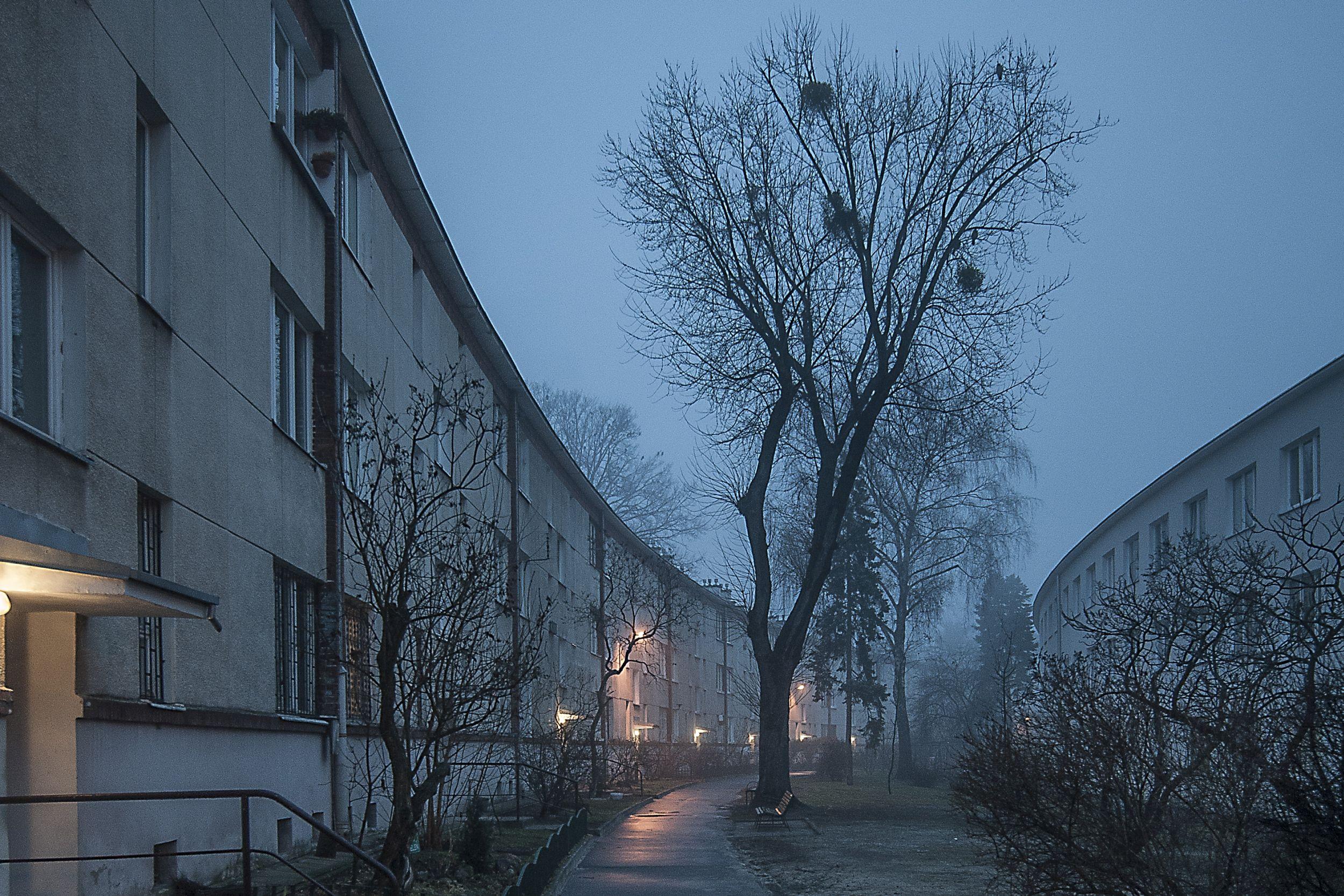 (fot. Filip Springer)
