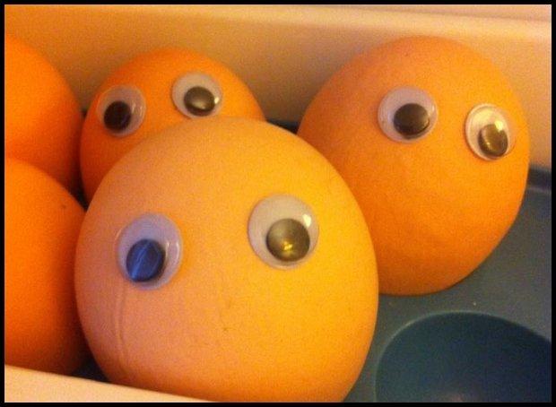 Gdy jajka patrzą, człowiek nie zgrzeszy / fot. Joanna Jędrasik