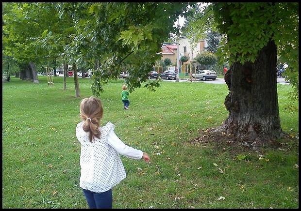 Żoliborz jeszcze zielony, za chwilę pieprzo... jesienny/fot. Sony Xperia Z