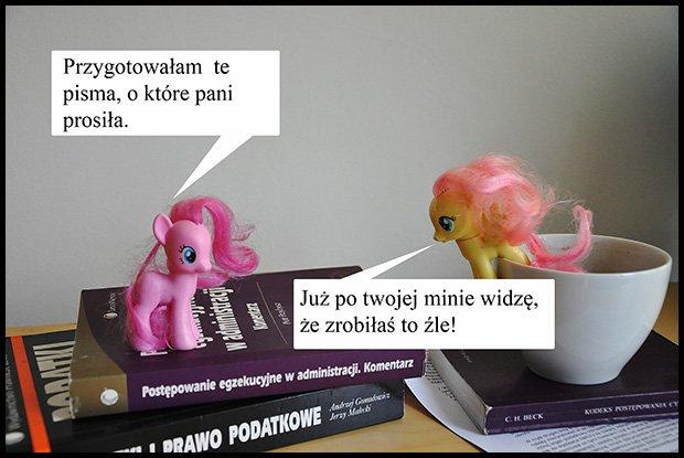 Jasnowidze są wśród nas /fot. Magda Acer