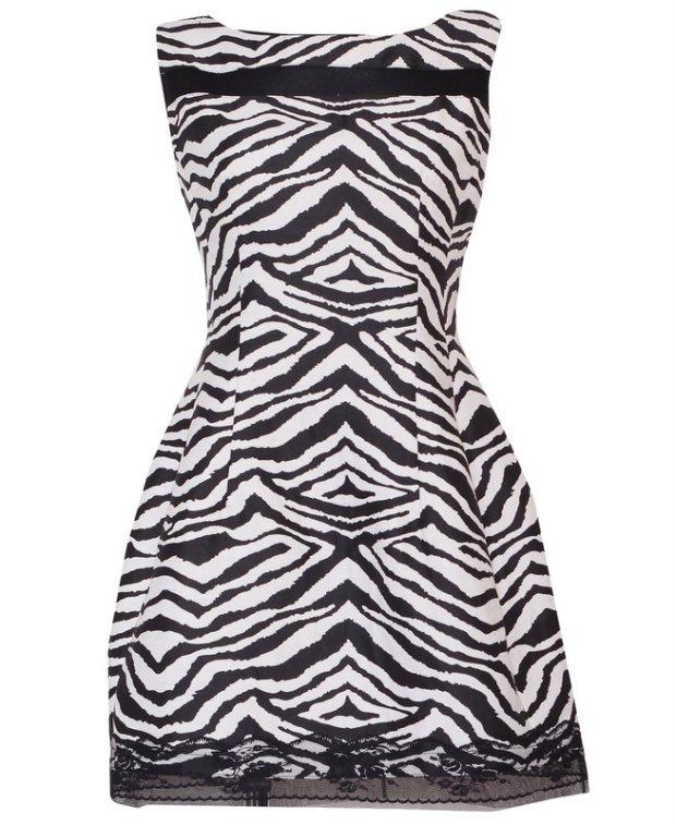 sukienka, zebra