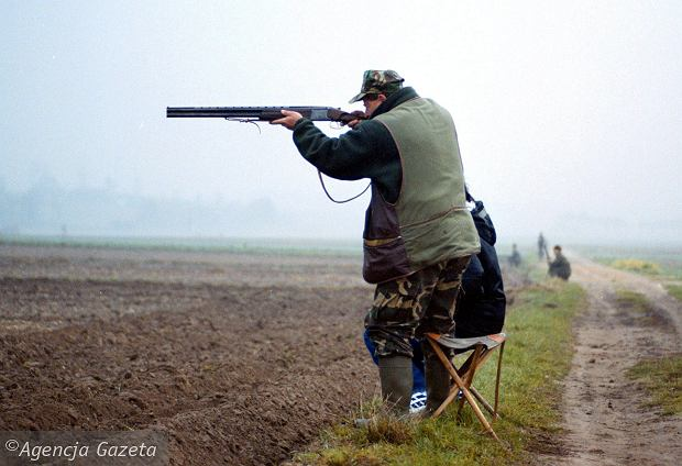Województwo świętokrzyskie, polowanie w kieleckim kole łowieckim nr 3 (fot. Jarosław Kubalski / Agencja Gazeta)