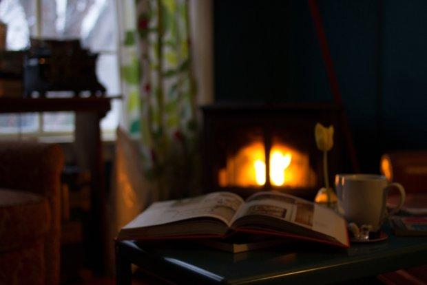 Domowe czytanie lektur w idealnym świecie (fot. Pexels.com CC0)