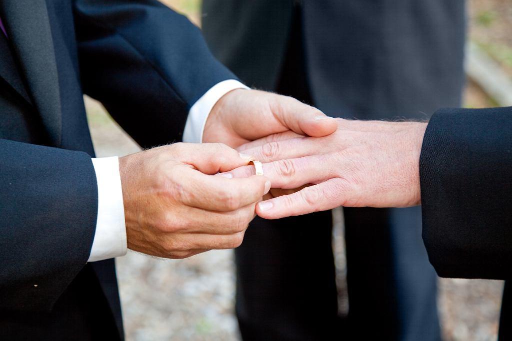 Homoseksualne małżenstwa są - w ocenie van den Aartwega - wymysłem, który ma osłabić znaczenie tradcyjnej rodziny (fot.  lisafx / iStockphoto.com)