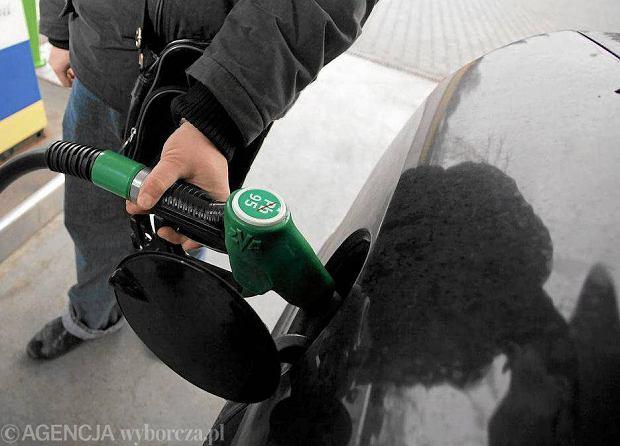 Najnowsze Co robić, jeśli zalejemy bak złym paliwem? EO91