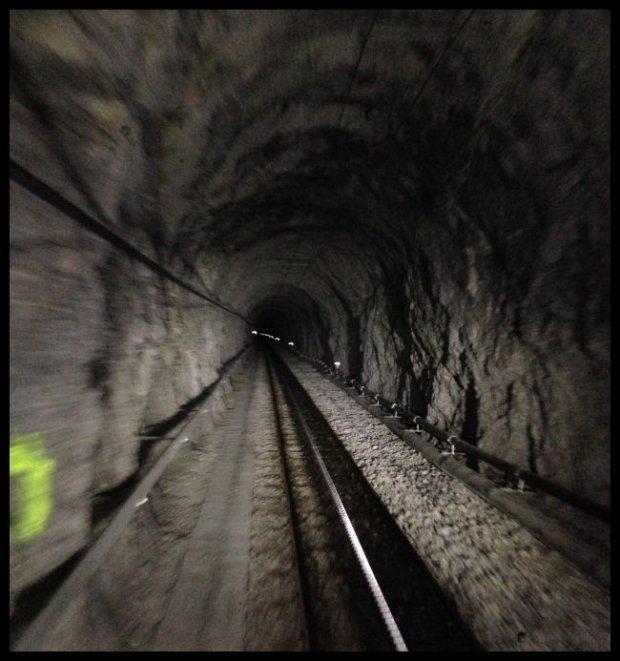 Stromy kolejowy podjazd we wnętrzu Alp