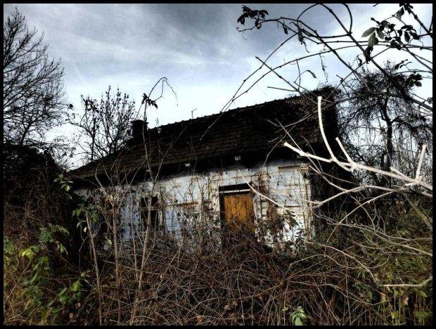 Ruiny chałupy w Niwkach koło Zalipia/fot. Inaa