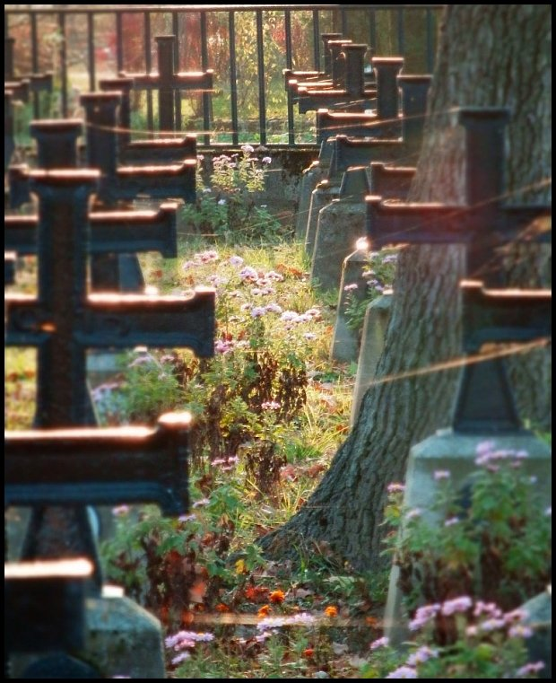 Cmentarz nr 259 w Bisupicach Radłowskich. Pochowani żołnierze armii austro-węgierskiej, niemieckiej i rosyjskiej. Projekt Johann Watzal