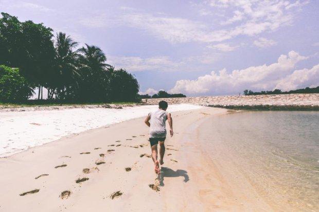 Hej! Biegam sobie po plaży! (Fot. cc0/ stocksnap.io)
