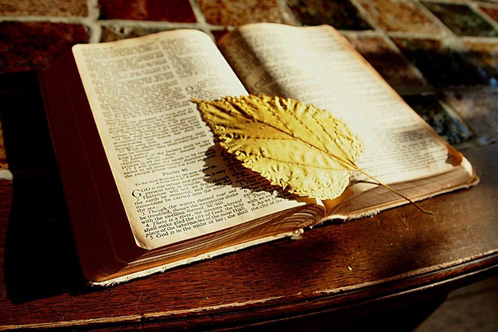 Twórcy Biblii traktowali duchowość bardzo dosłownie - mówi Patricia Pearson (fot. pixabay.com)