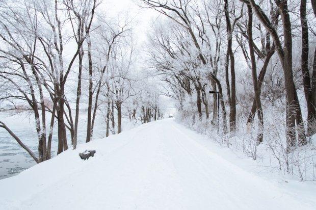 Zimą jest pięknie!  / fot. pexels.com CC0