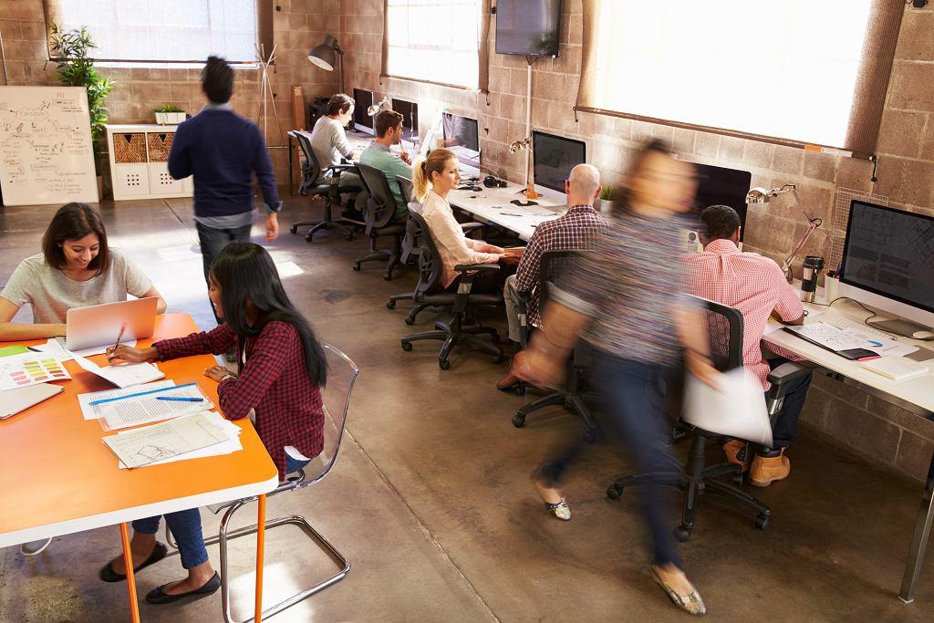 Pierwsze kroki na rynku pracy są często dalekie od ideału (fot. monkeybussimages / iStockphoto.com)