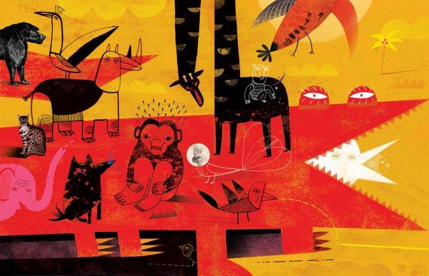 Afryka dzika w wykonaniu Agaty Dudek