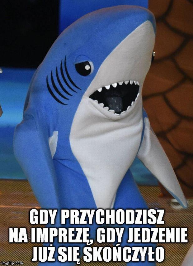 Memy Plotek.pl