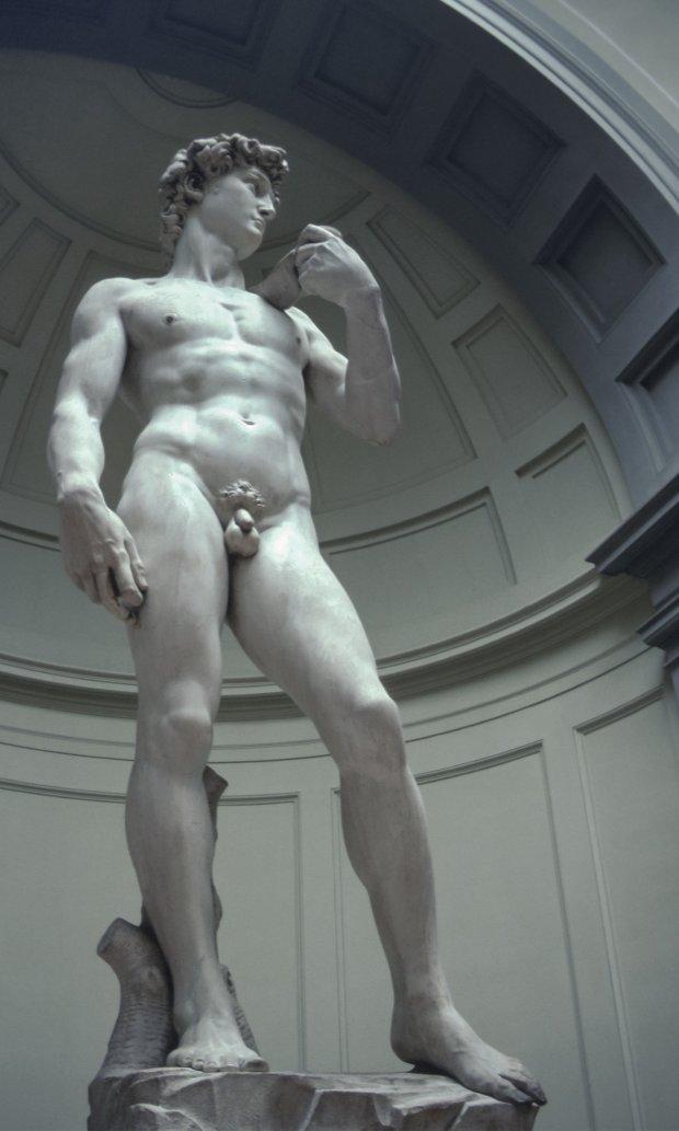 Dawid Michała Anioła