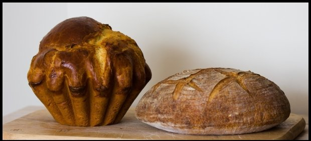 Briocha i chleb / fot. Dominik Bazyluk