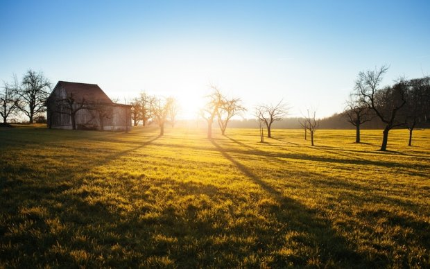 Słoneczko już wstało, więc i ja muszę. Co z tego, że jest piąta rano w sobotę... / fot. pexels.com CC0