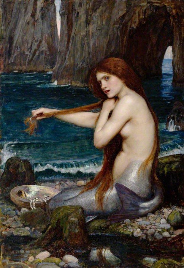 Ariel dla dorosłych (fot. Wikicommons CC0)
