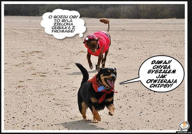 Oezil i Rico szaleństwa na plaży/fot:.Jarek Bąk
