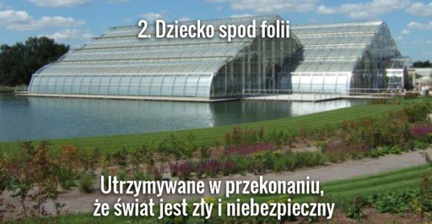 Foch.pl/Wikimedia Commons