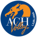 ACH Volley Lublana